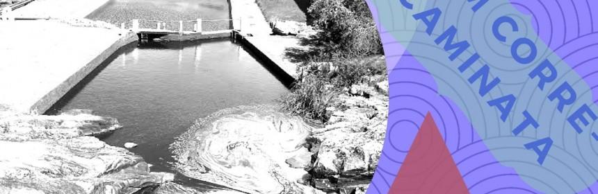 afiche 8k salto de agua 18 de marzo