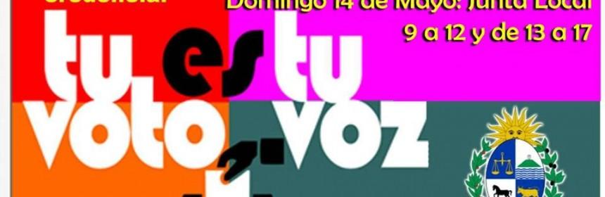 afiche corte electoral en cerro chato mayo 2017